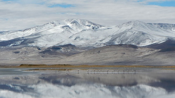 Salar_del_Huasco_Region_de_Tarapaco